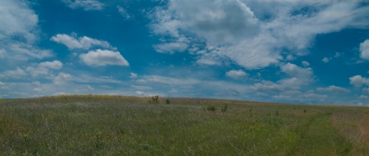 A panoramic view gives you an idea of the vastness of the prairies before farming expanded westwards.  The path on the right is mowed to make it easier for visitors to move around in the tall grass.